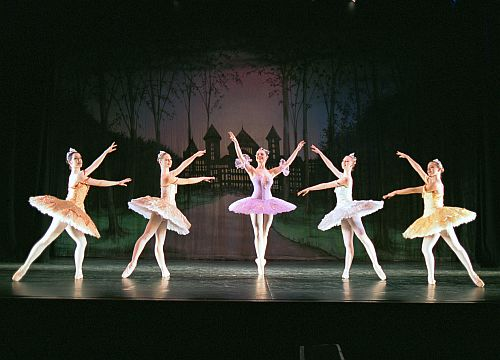 Sleeping Beauty-Copyright Vienna Festival Ballet.